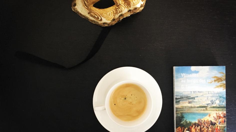 Versailles au temps des rois livre