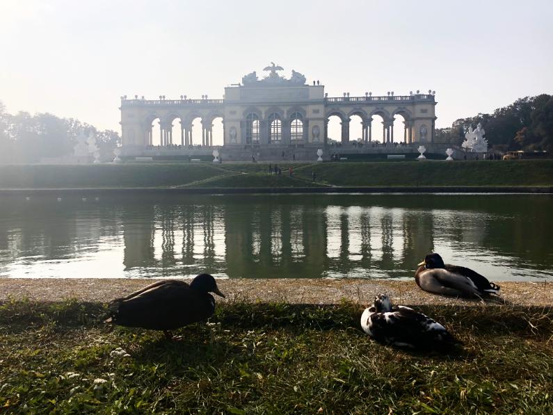 la gloriette au chateau de Schonbrunn à vienne