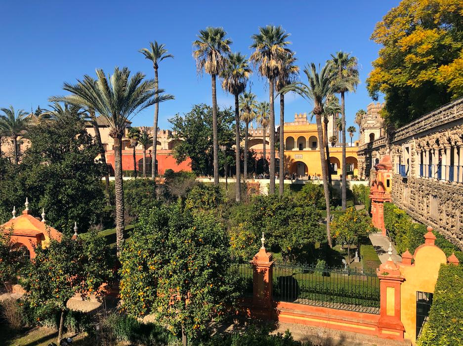 Jardin palmiers Real Alcazar Seville