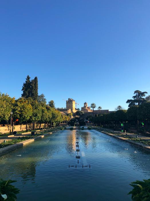 Jardin point d'eau Alcazar Cordoue