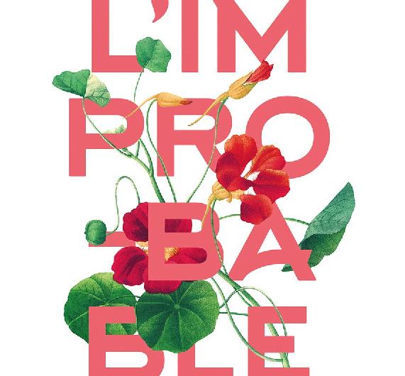 L'improbable logo